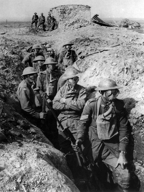Australian_infantry_small_box_